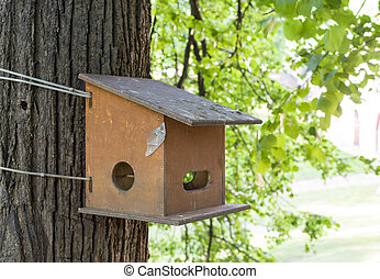 birdhouse on the tree in spring day. nature.