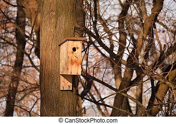Wooden birdhouse on the tree trunk