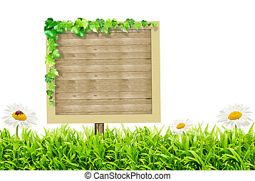 Wooden blank sign and green grass with daisies