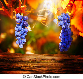 Wooden board in front of blue grapes