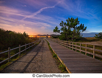 Wooden boardwalk and trail in the night