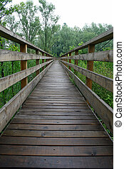 boardwalk nature trail in a nature park - wooden boardwalk ...