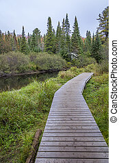 Wooden Boardwalk Next to a River - Algonquin Provincial Park