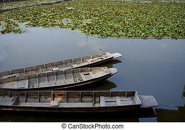 wooden boat floating in lotus pool