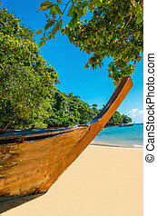 Wooden boat on sandy shore of exotic beach
