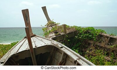 Bow stems of two old, abandoned, wooden boats partially obscure the tropical seascape, as weeds and vines grow between the planks.