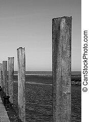 wooden bollards in harbor