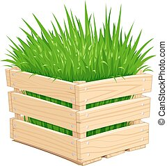 Wooden box with green grass