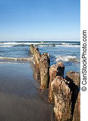 Wooden Breakwater, Baltic Sea