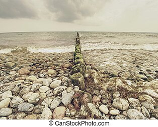 Wooden breakwaters on a shore of the Baltic Sea with a sun...