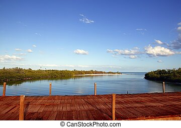 wooden bride over mangrove canal in mexico - wooden bride...