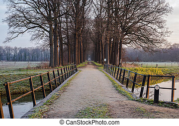 Wooden bridge and pad to the forest in the Netherlands, with a calm river