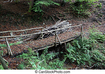 Wooden bridge covered with dry leaves