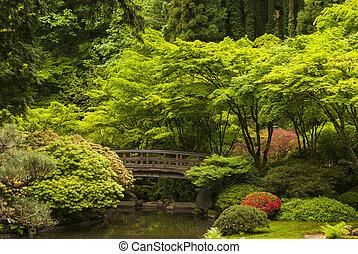 Wooden bridge in a Japanese garden