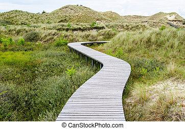 wooden bridge in a meadow