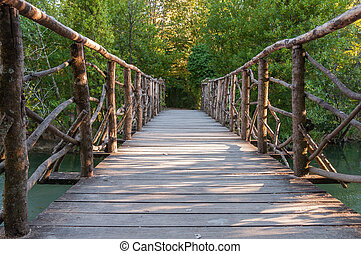 Wooden bridge in Curia park in Portugal