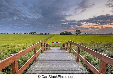 Wooden bridge in agricultural landscape