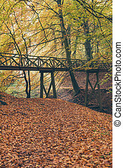 Wooden bridge in autumn forest.