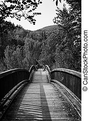 Wooden bridge in black and white over Fluvia River
