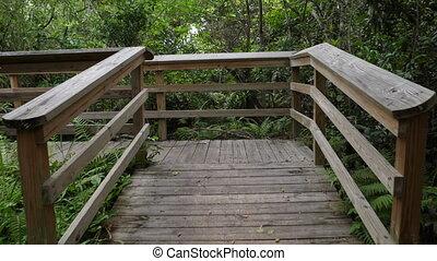 Wooden bridge in Everglades National Park