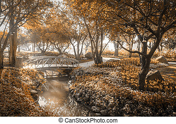 wooden bridge in flower garden on morning sun light sepia color