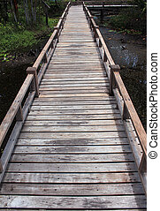 Wooden bridge in forest over the swamp, Thailand