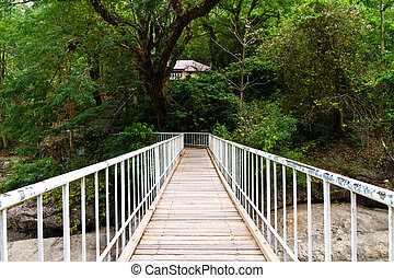 Wooden bridge in forest