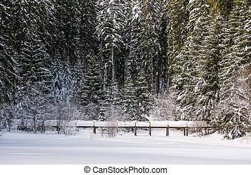 wooden bridge in snowy spruce forest. lovely winter scenery