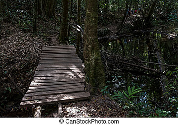 Wooden bridge in the deep forest.