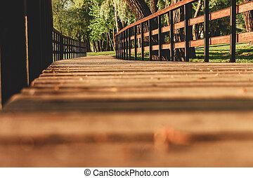 Wooden bridge in the forest sunlight