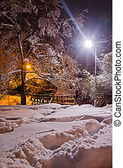 wooden bridge in the park at winter evening