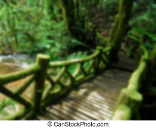 Wooden bridge in to the jungle, thailand, blur background