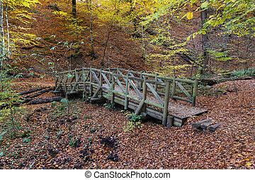 Wooden Bridge in Yedigoller National Park, Bolu, Turkey - ...