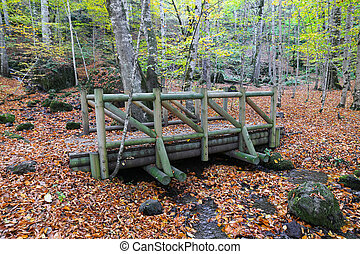Wooden Bridge in Yedigoller National Park, Bolu, Turkey