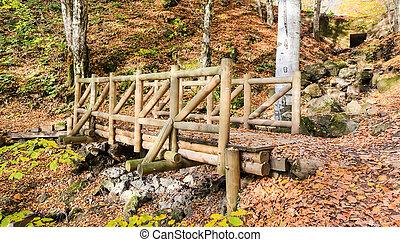 Wooden Bridge in Yedigoller National Park, Turkey
