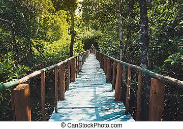 Wooden bridge lead to jungle in Thailand under blue sky