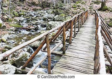 Wooden bridge mountain