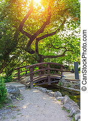 Wooden bridge over a creek in a Budapest park