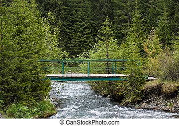 Wooden bridge over a creek