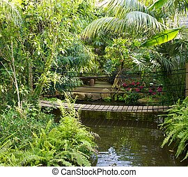 Wooden bridge over a pond in tropical park