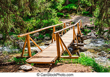 Wooden bridge over a stream in the forest.