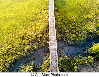 Wooden bridge over a swamp from above