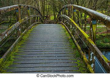 Wooden bridge over creek in Lake District.