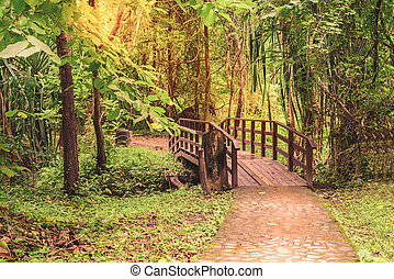 Wooden bridge over rill forest in naltional park.