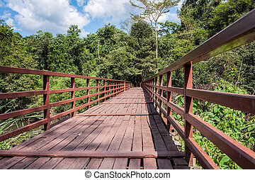wooden bridge over river leading to forest and sky background