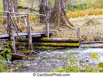 wooden bridge over stream in the forest.