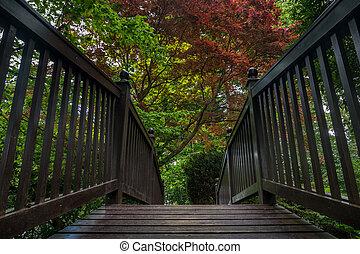 Wooden bridge over the creek in a garden.