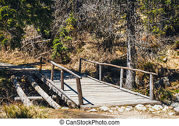 wooden bridge over the stream in the forest