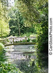 Wooden Bridge over woodland stream
