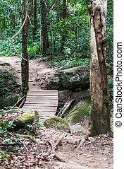 Wooden bridge path in forest closeup